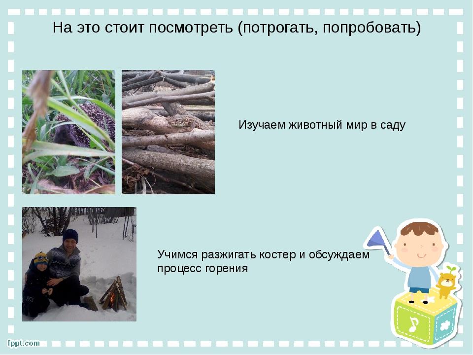На это стоит посмотреть (потрогать, попробовать) Изучаем животный мир в саду...