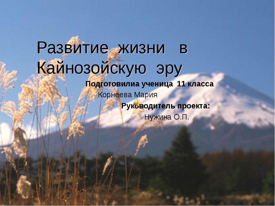 Развитие жизни в Кайнозойскую эру Подготовилиа ученица 11 класса Корнеева Ма...