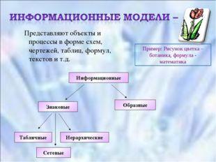 Представляют объекты и процессы в форме схем, чертежей, таблиц, формул, текс