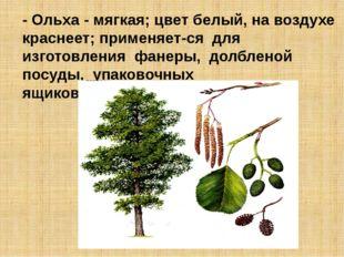 - Ольха - мягкая; цвет белый, на воздухе краснеет; применяется для изготовле