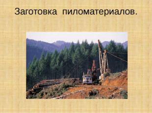 Заготовка пиломатериалов.