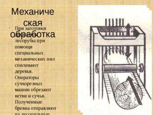 Механическая обработка При заготовки древесины лесорубы при помощи специальны