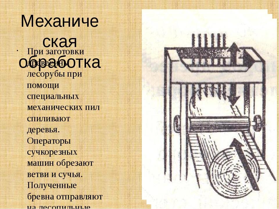 Механическая обработка При заготовки древесины лесорубы при помощи специальны...