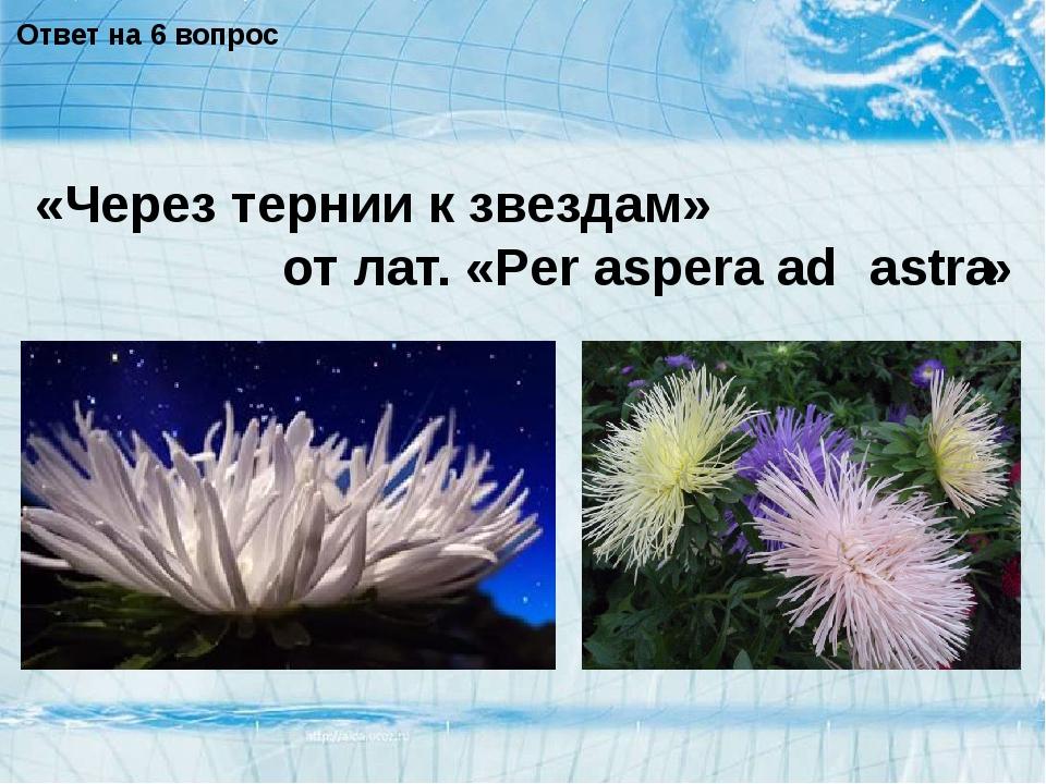 Ответ на 6 вопрос «Через тернии к звездам» от лат. «Per aspera ad » astra