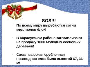 SOS!!! По всему миру вырубаются сотни миллионов ёлок! В Карасукском районе з