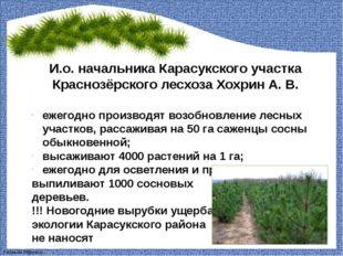 И.о. начальника Карасукского участка Краснозёрского лесхоза Хохрин А. В. ежег
