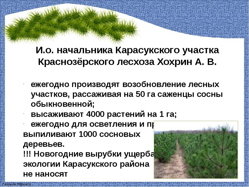 И.о. начальника Карасукского участка Краснозёрского лесхоза Хохрин А. В. ежег...