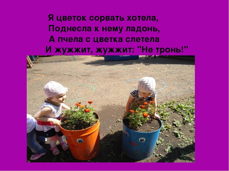 Я цветок сорвать хотела, Поднесла к нему ладонь, А пчела с цветка слетела И ж...