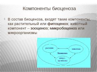 Компоненты биоценоза В состав биоценоза, входят такие компоненты, как растите