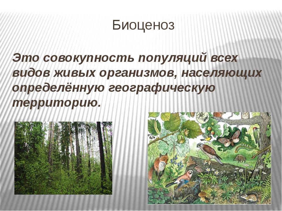 Биоценоз Это совокупность популяций всех видов живых организмов, населяющих о...