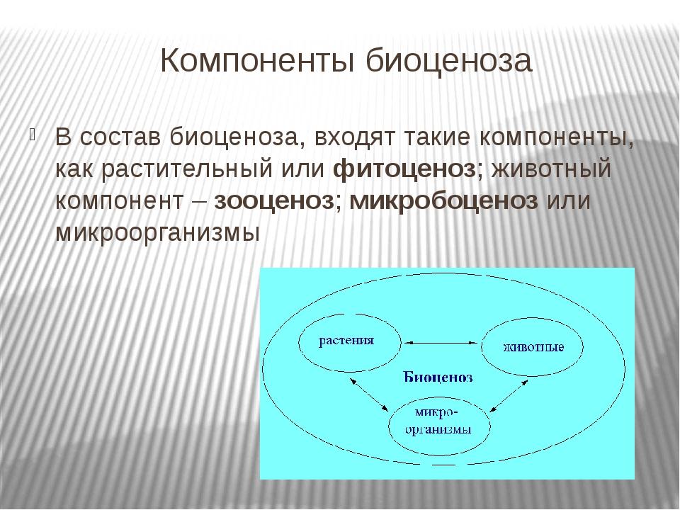 Компоненты биоценоза В состав биоценоза, входят такие компоненты, как растите...