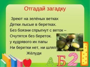 Отгадай загадку Зреют на зелёных ветках Детки лысые в беретках. Без боязни сп
