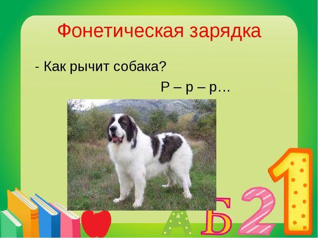 Фонетическая зарядка - Как рычит собака? Р – р – р…