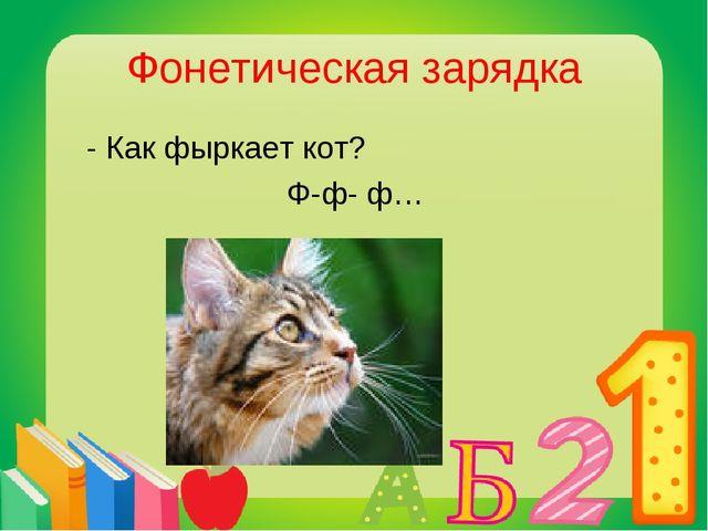 Фонетическая зарядка - Как фыркает кот? Ф-ф- ф…