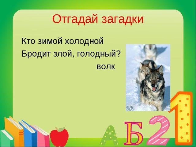 Отгадай загадки Кто зимой холодной Бродит злой, голодный? волк
