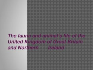 The fauna and animal's life of the United Kingdom of Great Britain and Northe