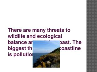 There are many threats to wildlife and ecological balance around the coast. T