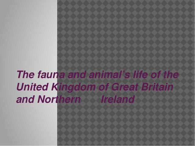 The fauna and animal's life of the United Kingdom of Great Britain and Northe...