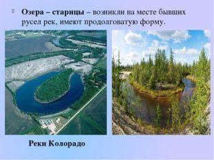 Озера – старицы – возникли на месте бывших русел рек, имеют продолговатую фор