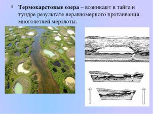 Термокарстовые озера – возникают в тайге и тундре результате неравномерного п