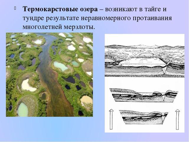 Термокарстовые озера – возникают в тайге и тундре результате неравномерного п...