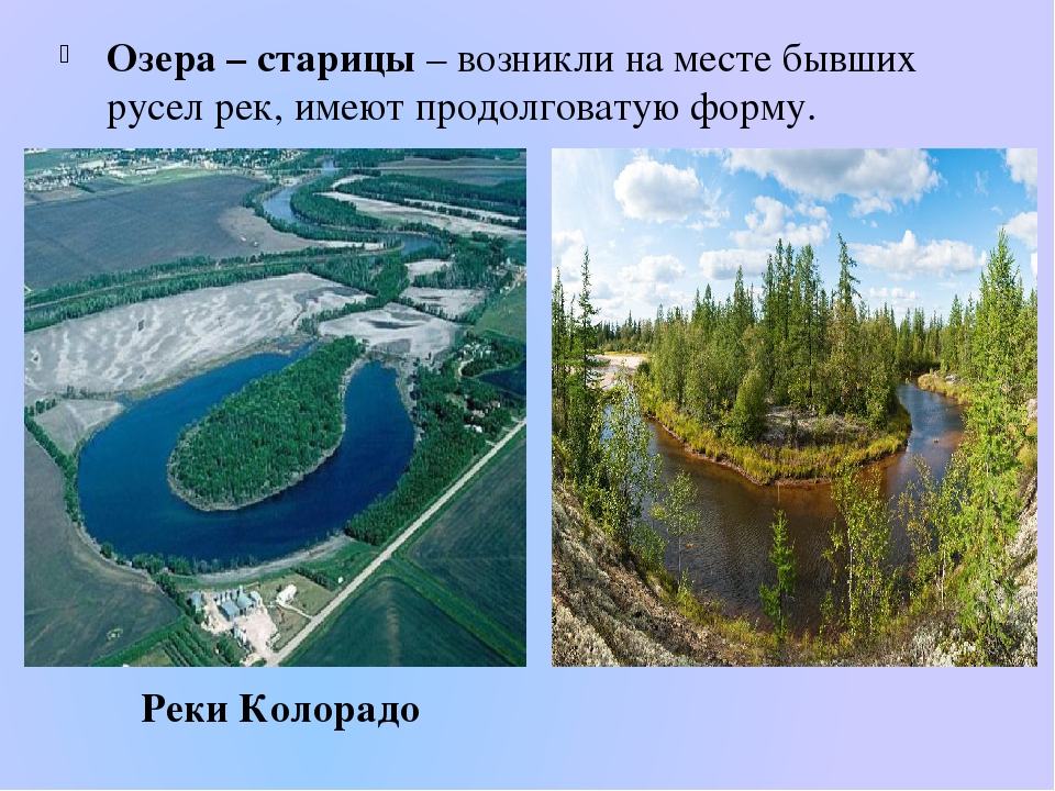 Озера – старицы – возникли на месте бывших русел рек, имеют продолговатую фор...