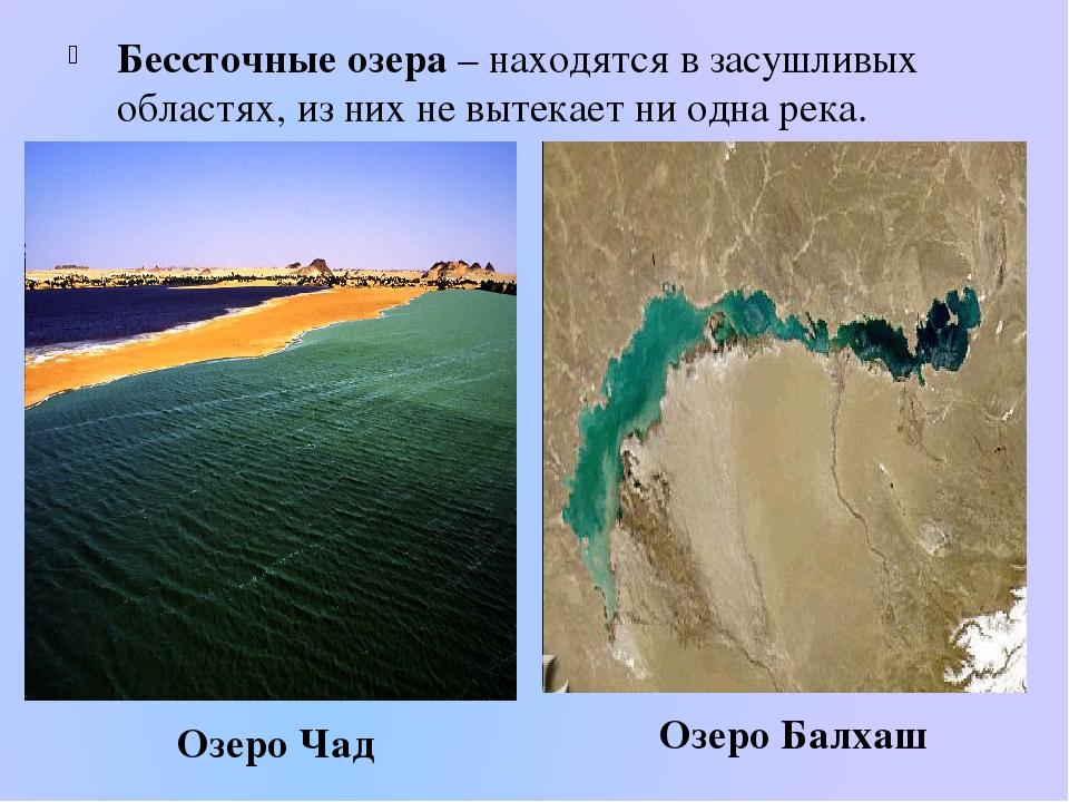 Бессточные озера – находятся в засушливых областях, из них не вытекает ни одн...