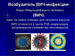Возбудитель ВИЧ-инфекции- Вирус Иммунодефицита Человека (ВИЧ), один из самых