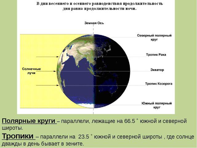 Полярные круги – параллели, лежащие на 66.5 ˚ южной и северной широты. Тропик...