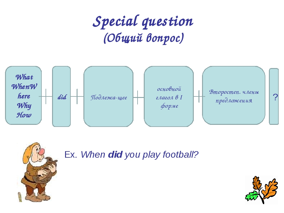 Special question (Общий вопрос) What WhenWhere Why How did основной глагол в...