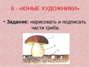 6 - «ЮНЫЕ ХУДОЖНИКИ» Задание:нарисовать и подписать части гриба.