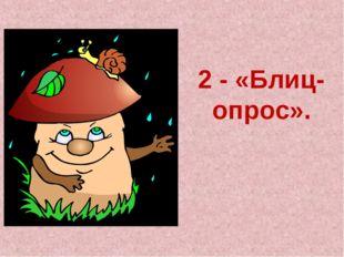 2 - «Блиц-опрос».