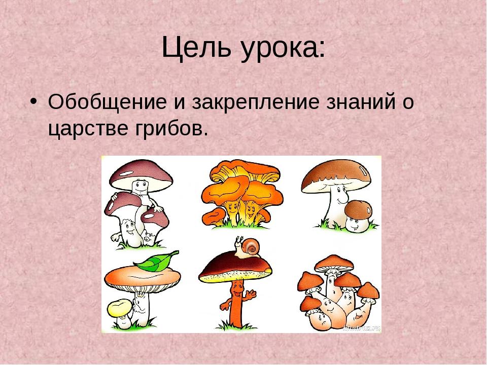 Цель урока: Обобщение и закрепление знаний о царстве грибов.