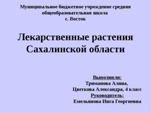 Выполнили: Триманова Алина, Цветкова Александра, 4 класс Руководитель: Емель