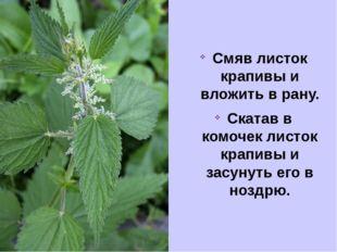 Смяв листок крапивы и вложить в рану. Скатав в комочек листок крапивы и засун