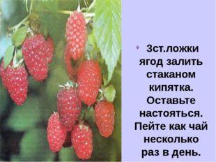 3ст.ложки ягод залить стаканом кипятка. Оставьте настояться. Пейте как чай н