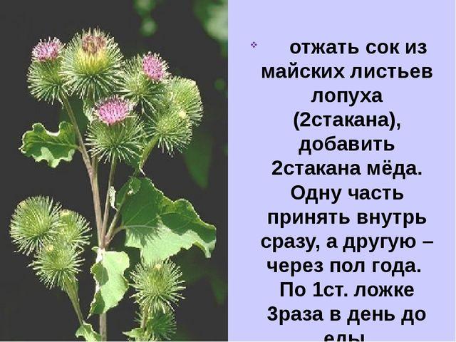 отжать сок из майских листьев лопуха (2стакана), добавить 2стакана мёда....