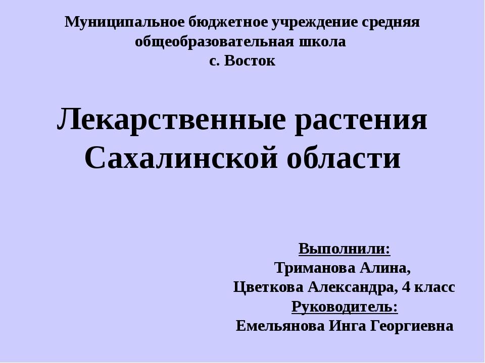 Выполнили: Триманова Алина, Цветкова Александра, 4 класс Руководитель: Емель...