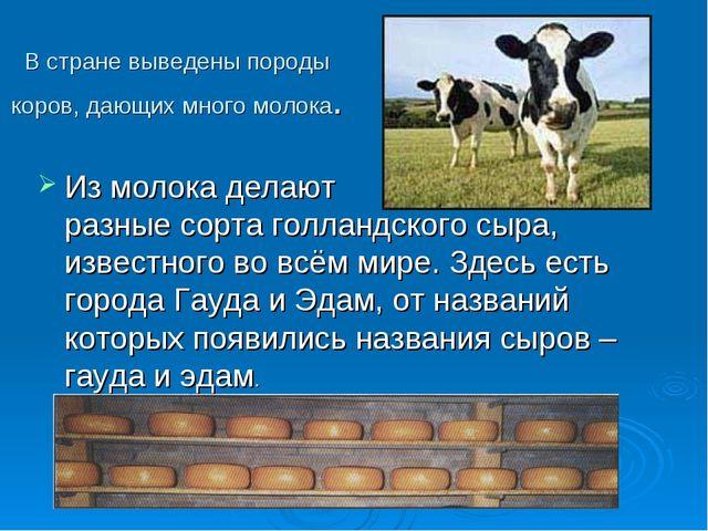 В стране выведены породы коров, дающих много молока. Из молока делают разные...