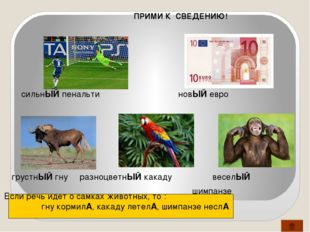 Вывод 5. «Берегите наш язык, наш прекрасный русский язык! Этот клад, это дост