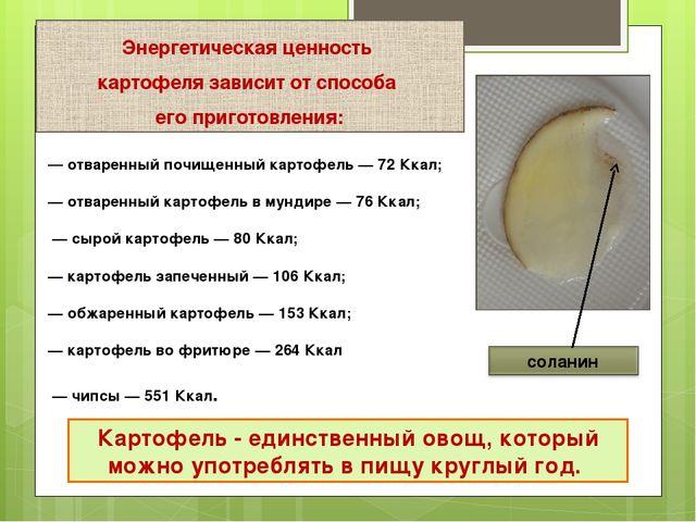 Картофель - единственный овощ, который можно употреблять в пищу круглый год....