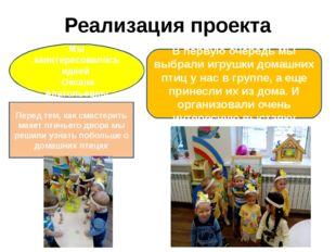 Реализация проекта В первую очередь мы выбрали игрушки домашних птиц у нас в