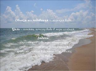 Объект исследования – морская вода. Цель – понять, почему вода в море солёна