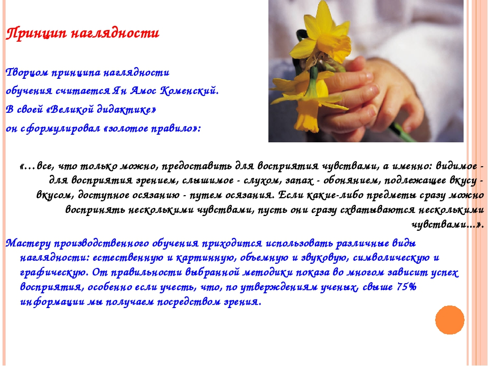 Принцип наглядности Творцом принципа наглядности обучения считается Ян Амос...