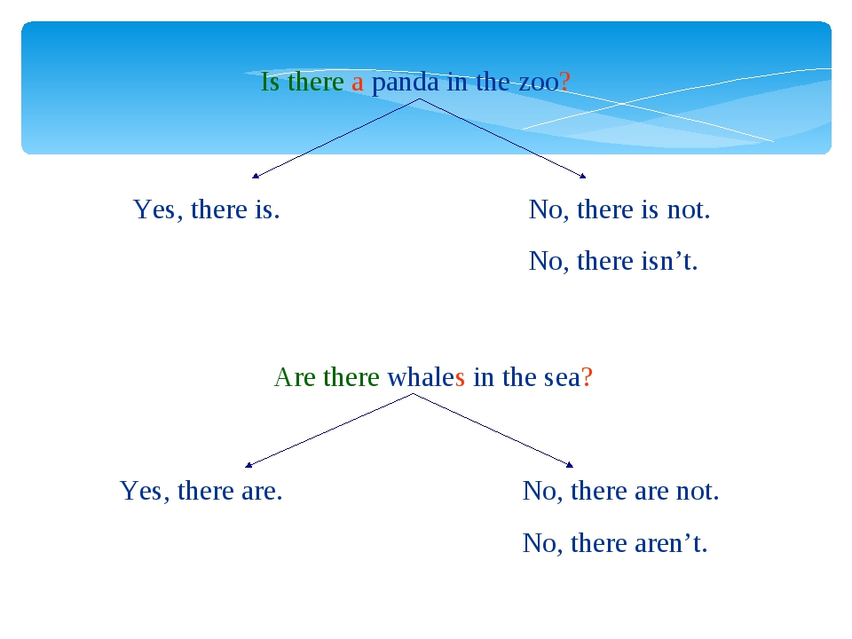 Is there a panda in the zoo? Are there whales in the sea? Yes, there is. No,...