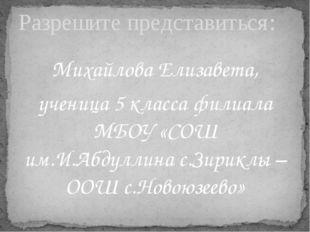 Михайлова Елизавета, ученица 5 класса филиала МБОУ «СОШ им.И.Абдуллина с.Зири