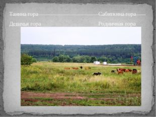 Танина гора Сабиткина гора Девичья гора Родничная гора ______________________