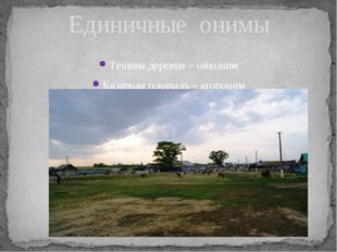 Тещина деревня – ойконим Базарная площадь – агороним Единичные онимы