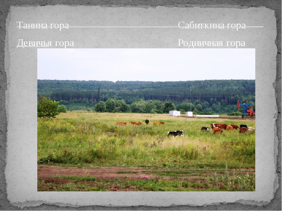 Танина гора Сабиткина гора Девичья гора Родничная гора ______________________...