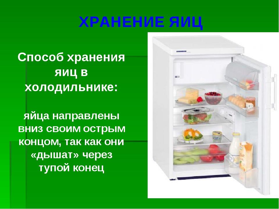 Способ хранения яиц в холодильнике: яйца направлены вниз своим острым концом,...